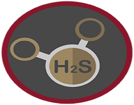 Hydrogen Sulfide Safety (HST): Train-The-Trainer